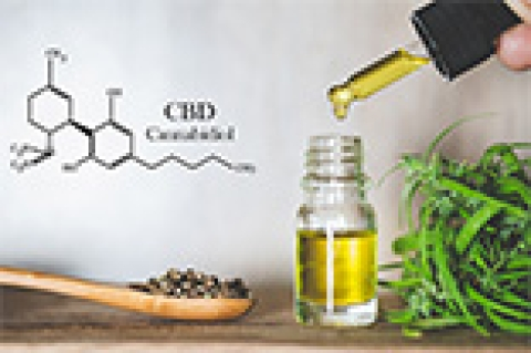 Can CBD Oil Help Alleviate Your Pain?